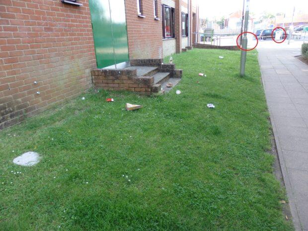 litter and bins