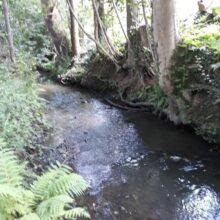 Monks Brook