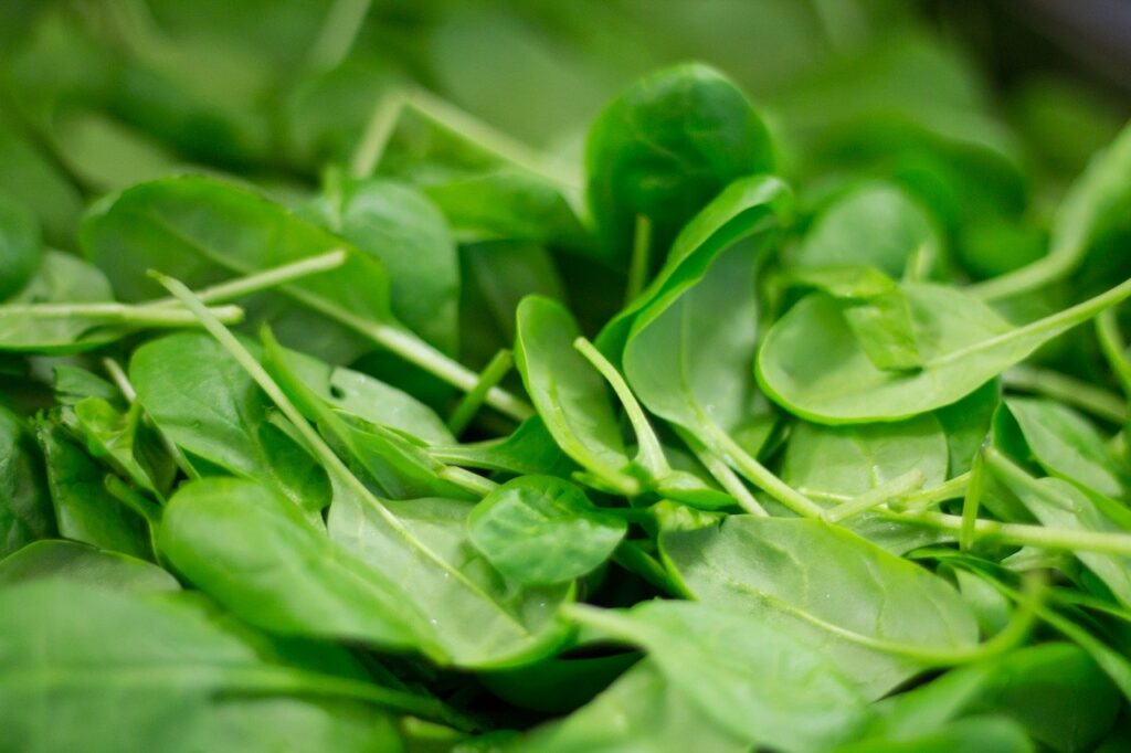 Spinach image by Thilo Becker via Pixabay.